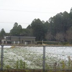 2016.1.19雪 (4)