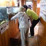 2016.8.23 外出レク出の山水族館 (7)