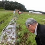 2018.7.10 スイカの収穫 (3)